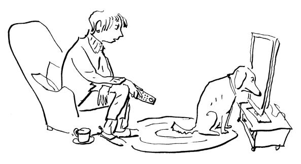 Caption that cartoon | Children's Author David L. Harrison ...