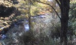 Brook at Boyds Mill
